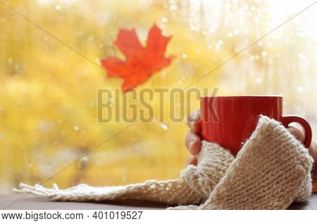 Red Mug With A White Scarf In Hand Against The Background Of The Window After The Rain. Warming Autu
