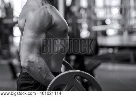 Bodybuilder, Man Holding A Barbell In The Gym. Muscular Male Bodybuilders Doing Bodybuilding Biceps