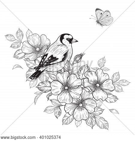 Hand Drawn Goldfinch Sitting On Dog-rose Branch With Flowers And Flying Butterfly. Vector Monochrome