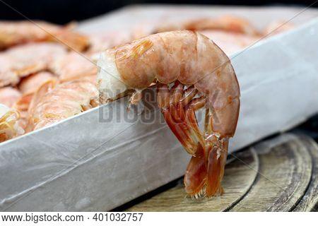 Fresh Raw Frozen Langoustines, Sea Food So Close