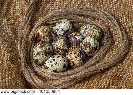 Quail Eggs On Burlap. Healthy Food. Quail Eggs Lie In A Nest Of Jute Thread
