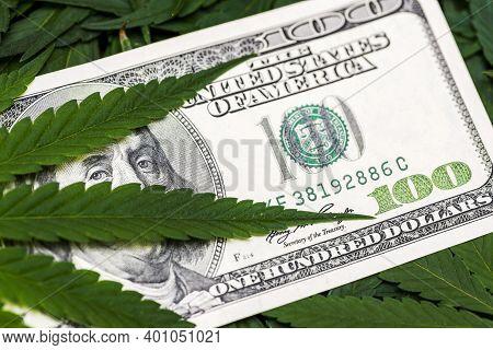 Leaf Of Marijuana In Cash Hundred Dollar Bills. A Sheet Of Marijuana For Money, Dollars And Cannabis