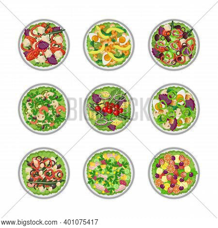 Set Of Vegetable Green Salad Bowls Top View Flat Vector Illustration Isolated.