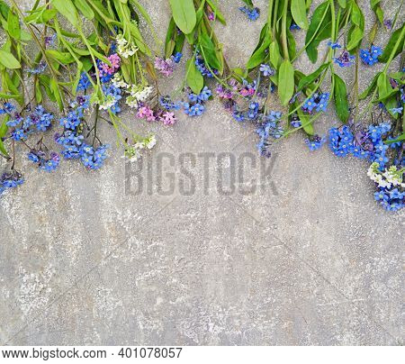 Bouquet Of Blue, Pink And White Forget-me-nots On A Gray Concrete Background. Spring Flowers. Top Vi