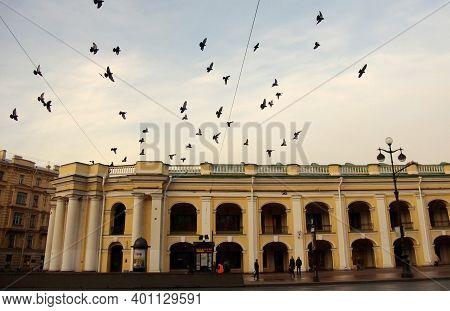 April 27, 2012 St. Petersburg, Russia. Pigeons Over The Gostiny Dvor Building On Nevsky Prospekt In