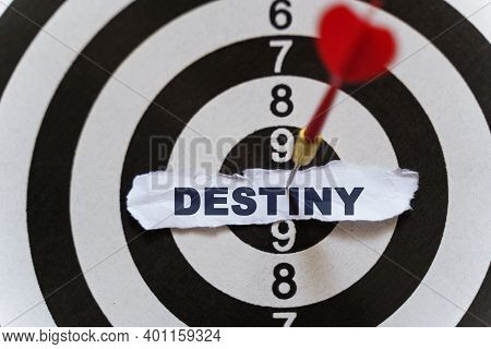 Business And Finance Concept. A Piece Of Paper With The Text Is Nailed To The Target With A Dart - D