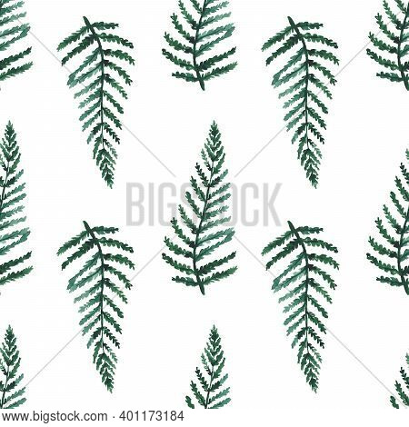 Fern Leaves Seamless Pattern. Watercolor Tropical Foliage Endless Background. Green Fern Watercolor