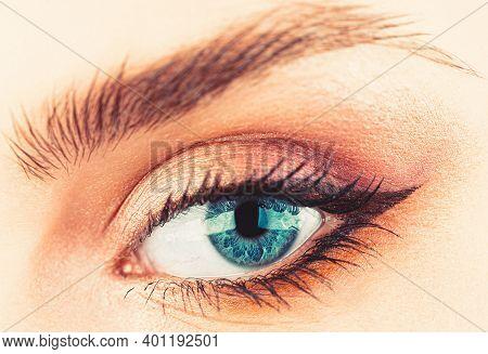 Macro Of Human Eye. Woman Eyes With Beautiful Makeup. Closeup Eyebrow And Blue Eye. Woman With Soft