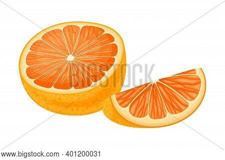 Halved Orange Showing Juicy Flesh Segments Vector Illustration