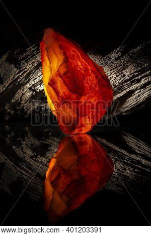 Beauty Of Natural Raw Amber. A Piece Of Yellow-red Transparent Natural Amber On Piece Of Stoned Wood