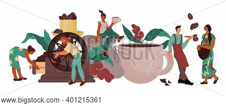 Coffee Drink Producing And Processing Banner Template With People, Vector.