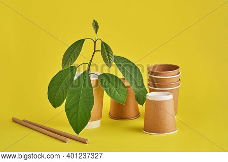 Drinking Tubes Made Of Paper And Cornstarch, Biodegradable Material And Eco Paper Glasses With Green