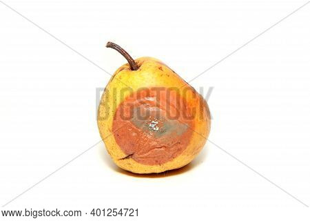 One Mouldy Pear. Rotten And Uneatable. Isolated On White Background.