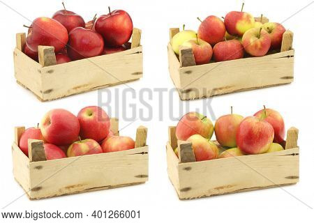 delicious red Jonagold apples, red and yellow apples and fresh