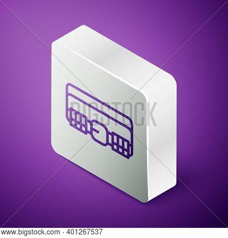 Isometric Line Hunting Cartridge Belt With Cartridges Icon Isolated On Purple Background. Bandolier