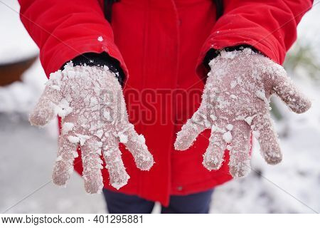 Close Up Of Woman's Hands In Gloves With Snow. Unrecognizable Woman Playing With Snow On Walk In Win