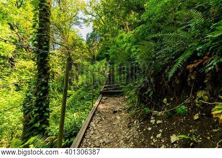 Hiking Trail In National Park. Concept Of Ecotourism For Young.