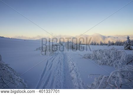 Mountain Trail In The Snow. Tatry. Poland.