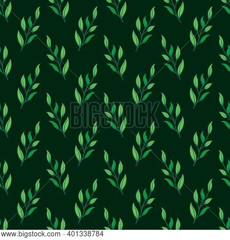 Vector Seamless Pattern With Foliate Twigs On Dark Green Background; For Wrapping Paper, Packaging,
