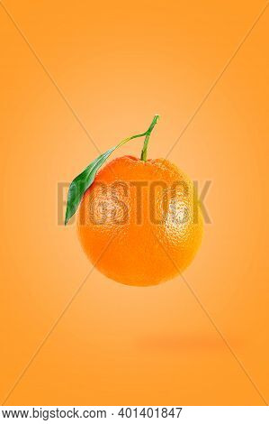 Minimal Creative Idea With Fresh Fruits On Colored Background