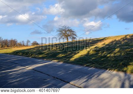 Sunset In Countryside Landscape. Oak Tree And Countryside Landscape. Nature Landscape. Sunset In Mea