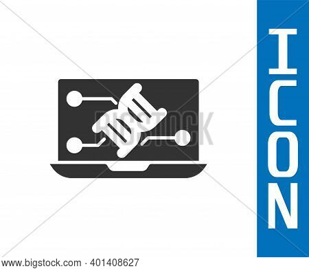 Grey Genetic Engineering Modification On Laptop Icon Isolated On White Background. Dna Analysis, Gen