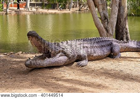 Townsville, Queensland, Australia - December 2020: A Replica Of A Saltwater Crocodile On The Banks O