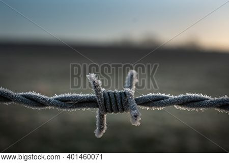 Barb Wire Covered In Frost. Barb Is Centre And Front Of Frame With Blurred Field In Background And E