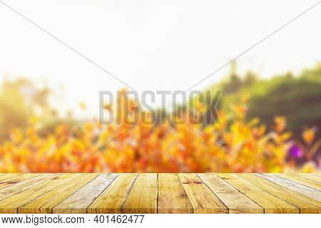 Shelf Of Brown Wood Plank Board With Blurred Green Nature Background. Old Vintage Style.