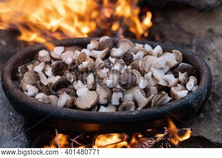 Food Of Natural Edible Mushrooms Are The Fleshy And Edible Fruit Bodies Of Several Species Of Macrof