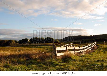 Farmland Near Stanley