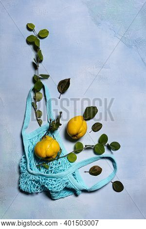 Two Quince Apples, Quince Tree Branches, Leaves And Blue Mesh Bag On Blue. Directly Above View. Frui
