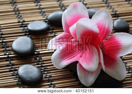 Zen Pebbles And Artificial Flower