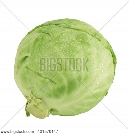 Fresh Cabbage With Water Drops Isolated On White Background With Clipping Path