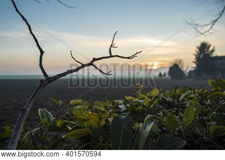 Colours Of Countryside At Sunset In Winter Season In North Italy