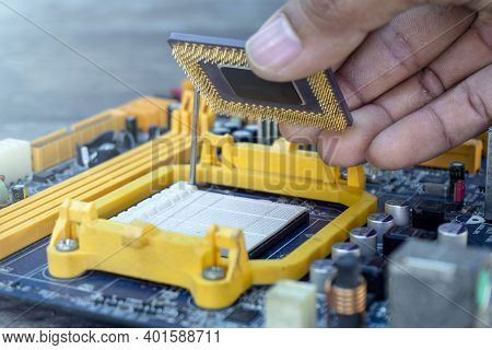 Technician Hand Holding The Cpu Or Central Processing Unit Chip Microprocessor Fixing And Upgrade Co