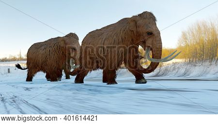 A 3d Illustration Of A Herd Of Woolly Mammoths Walking Across A Snowy Field During The Ice Age.