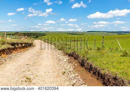 Farm Road With Araucaria Forest In Sao Francisco De Paula, Rio Grande Do Sul, Brazil