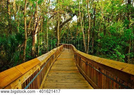 Woods Trail For Hiking In Blue Springs State Park In Florida Near Florida Springs