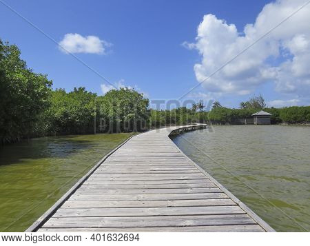 Wooden Walkway Over Tropical Waters. Caribbean Blue Sky. Martinique. French West Indies