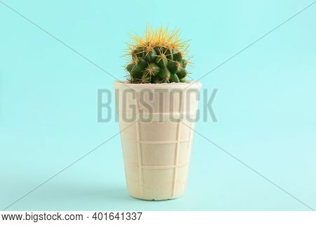 Cactus In Ice Cream Waffle On Cyan Background. Tooth Sensitivity To Cold