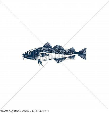 Codfish Freshwater Gamefish Fish Isolated Monochrome Icon. Vector European, Balkhash Or Yellow Perch