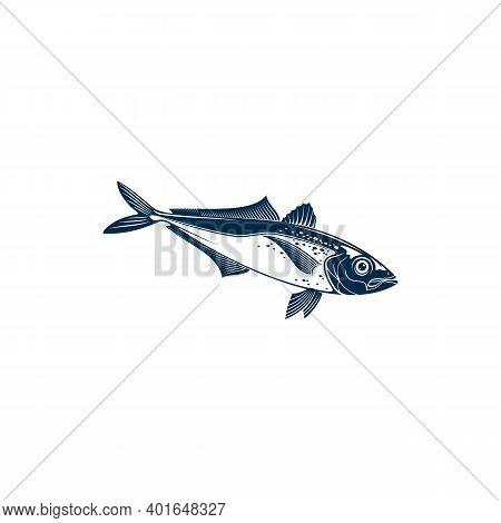 Horse Mackarel With Flounders, Mackerel Fishing Sport Emblem Isolated Bluefish Mascot. Vector Scombr