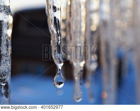 Icicles And A Drop Of Melt Water Close-up. Snow Melting. The Beginning Of The Warm Season, The End O