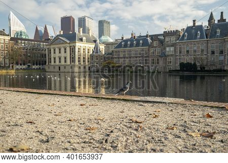 The Hague, The Netherlands - November 10, 2020: Peace And Quiet At The Courtyard, Due To The Lockdow