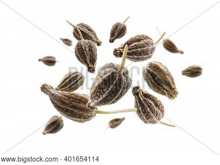 Anise Seeds Levitate On A White Background