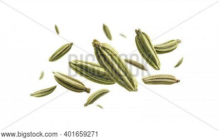 Fennel Seeds Levitate On A White Background