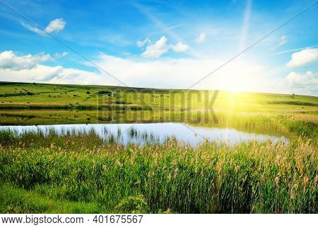 Scenic View At Beautiful Sunset With Reflection On A Shiny Lake With Green Reeds, Grass, Golden Sun