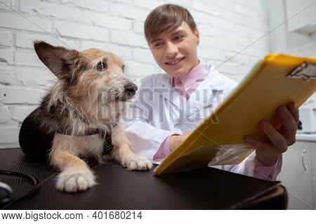 Cheerful Male Vet Showing Cute Shelter Dog His Medical Results On A Clipboard After Examination At V