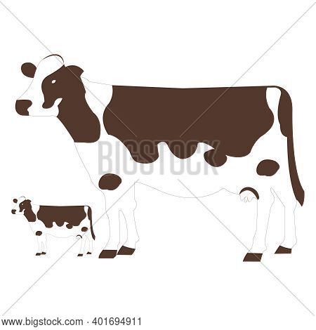 Dark Brown Cow And Calf On White Backdrop